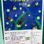 柏『ほたるの夕べ  2019』増尾の森