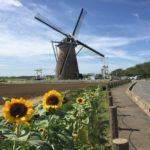 佐倉のオランダ風車『マルシェかしま』の焼きたて米粉パン