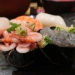 焼津さかなセンター『回転寿司 のぶちゃん』で朝どれ新鮮平日限定にぎり