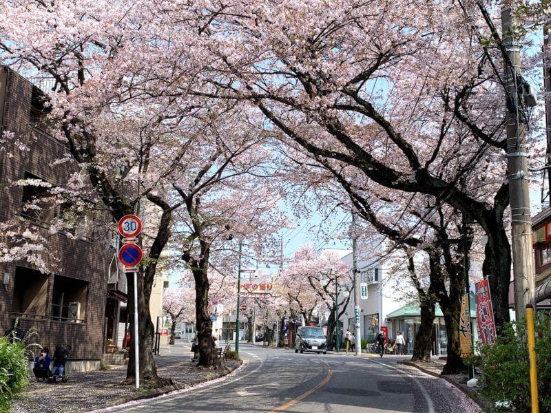 増尾駅前ほのぼの通り