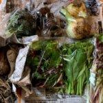 『食べチョクコンシェルジュ』伊勢市の一曜菜園さんでオーガニック野菜のオーダーメイド宅配を利用しました!