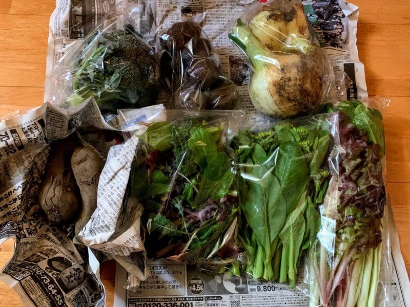 三重県 伊勢市の一曜菜園さんのお野菜