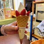 『和田農園・印西』いちご狩りのできる観光農園でかき氷とソフトクリーム