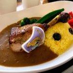 『千葉市動物公園 森のレストラン』のチーターチキンカレー